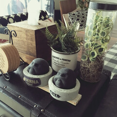 DIY/手作り/セメント/雑貨/百均/リビング/... なかなか気に入った容器が無くて、セメント…