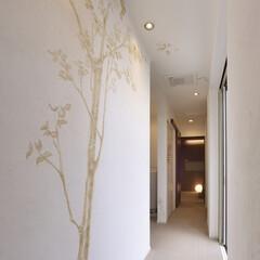 インテリア/住まい/リフォーム/ミサワリフォーム株式会社/ミサワリフォーム横浜モデルルーム/リノベーション/... シットリとしたスイス漆喰アートで内装を仕…