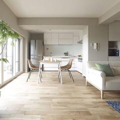 リフォーム/インテリア/住まい/キッチン/リノベーション/インテリアデザイン/... 住まいの性能向上を重視したマンションスケ…