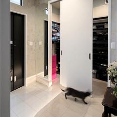 インテリア/住まい/リフォーム/玄関/収納/リノベーション/... 戸建住宅のリノベーション。玄関の両サイド…