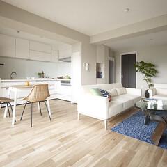 インテリア/住まい/リフォーム/リノベーション/インテリアデザイン/インテリアコーディネート/... 住まいの性能向上を重視したマンションスケ…
