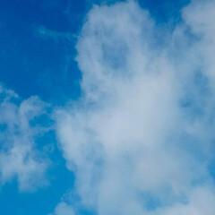 五月晴れ/梅雨/6月/気持ちの良い朝 梅雨の季節ですが今日はまた気持ちの良い朝…
