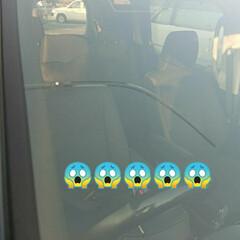 飛び石/フロントガラス パパさんからのLINE 車のフロントガラ…