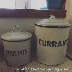 キッチンカウンター/キッチンインテリア/キッチン/キャニスター/ホーロー/フレンチインテリア/... 昨日、投稿した『CURRANTS』缶と …