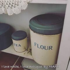 手作りキャビネット/元和室/Cake缶/Flour缶/Tala社/Tin缶/...  こんにちは〜  昨日は花粉の中にいて …