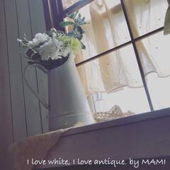 お花が好き/お花のある暮らし/フラワーアレンジメント/水差し/いいね♡ありがとうございます/アンティーク/... 白いお花ばかりを白いホーロー アンティー…
