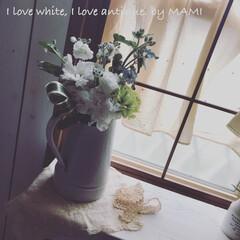 花が好き/お花のある暮らし/フラワーアレンジメント/水差し/いいね♡ありがとうございます/アンティーク/... こんばんは!  お花をアレンジメントしま…