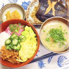 和食/ネバネバ丼/おうちごはん コンバンハー(´∀`∩✌️  今日は暑…
