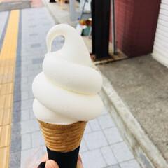 ソフトクリーム/お土産/スイーツ/おでかけ お久しぶりでした(*・ω・)👍  相変わ…