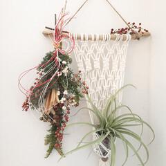 マクラメ編み/タペストリー/リメイク/水引き/スワッグ/お正月/... クリスマスに作ったスワッグをお正月ver…