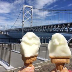 美味しい/徳島/シャーベット/アイス/おやつタイム/旅行/... 徳島で食べた、すだちシャーベット🍨 この…
