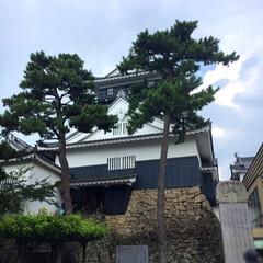 きれい/美味しい/雲/空/愛知/岡崎/... 今度は松本城ではなく、愛知県岡崎市にある…
