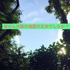 怖い/心配/枚方/高槻/大阪/地震 大阪の地震大丈夫でしたか? 私のところも…