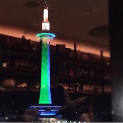 ディナー/クリスマスツリー/イタリアンレストラン/京都タワー/京都駅/美味しい/... 京都・中心地 Part2 京都タワーが見…