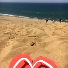 夏/海/ありがとう平成/令和の一枚/フォロー大歓迎/LIMIAファンクラブ/... 今度は鳥取砂丘へ🐫 とっても角度がきつい…