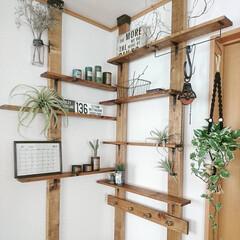 ディアウォール/賃貸/DIY/飾り棚/賃貸インテリア/賃貸DIY/... 1.改善したかった点 部屋のコーナーのス…