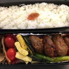 アメリカ/ニューヨーク/弁当 主人にお弁当作りました。 日本食の食材が…