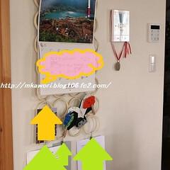 IKEA/壁面収納/ネクタイ/ベルト IKEAのネクタイやらベルトを収納するグ…