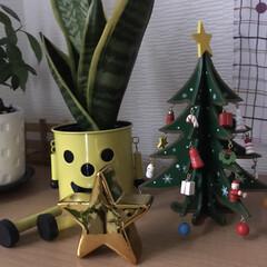 スター/玄関/クリスマス/クリスマスツリー/ダイソー/インテリア