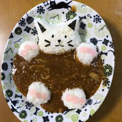 キャラ/ずんだシェーク/カレーライス🍛/猫/おうちごはん まねっこして作ってみました。 cocoさ…