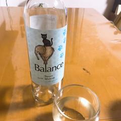 カルディ/白ワイン/おうちごはんクラブ/グルメ/フード/わたしのごはん カルディで購入のお手頃ワイン  瓶がかわ…