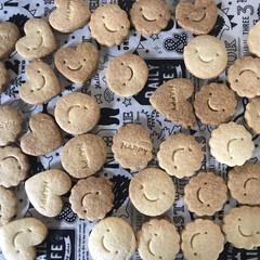 簡単/手づくり/クッキー/フード/おうちごはん 外は寒いので‥ クッキー作りました マー…