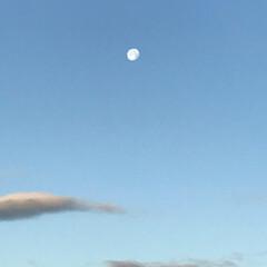 寒い/冬/霜/月/朝日/風景 朝日が眩しいです。 その反対側には月がひ…(2枚目)
