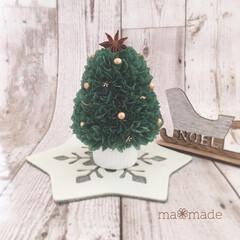 ペパナプツリー/ミニツリー/プレゼント/クリスマスツリー/ツリー/ペパナプフラワー/... グリーンのペパナプフラワーで作ったミニツ…