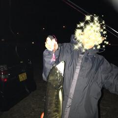 鮭/夜釣り/秋 夜釣りに出掛けた旦那と息子。 家族LIN…