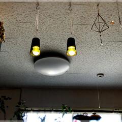 照明/DIY/雑貨/100均/セリア/ダイソー/... 先程、UPしたフォトを下から見た感じです…