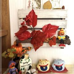まだ暑いけど秋模様/招き猫/100均/セリア/ダイソー/玄関 我が家の玄関の飾りも秋模様&ハロウィンぽ…