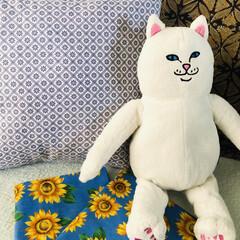 枕カバー/クッション/手芸/インテリア/住まい/ハンドメイド 娘が使っていた枕を洗ったら、生地の端が破…