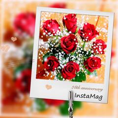 ありがとう♡/バラの花束/結婚記念日 今年もダンナさんからいただきましたっ♡