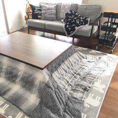 RÅSKOG ロースコグ ワゴン | イケア(キッチンワゴン)を使ったクチコミ「我が家の寒さ対策♡  冷え症の私は、 こ…」(1枚目)