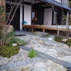造園/庭/エクステリア/外構/リフォーム/滋賀/... 滋賀の庭