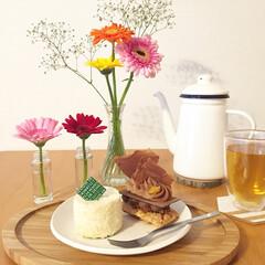 ケーキ/おやつ/花のある暮らし/インテリア/フード/スイーツ ティータイムにお花を添えて💐