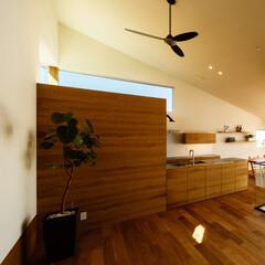 中庭/リビング/ダイニング/家づくり/設計/設計事務所/... ■haus-wrap■ 箱型のパントリー…
