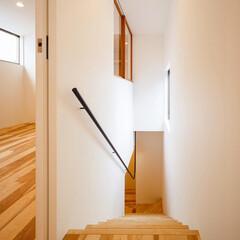 マイホーム/家づくり/建築/設計/階段/stairs/... 陽当たりの良い南面の窓からの光を共有する…(1枚目)
