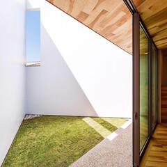 カコソラ/青空/芝生/中庭/ダイニング/設計/... 三角形の中庭の先端にあるスリットは上手く…