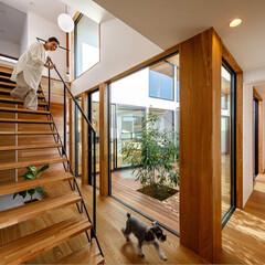 中庭/中庭のある家/犬との暮らし/犬と暮らす/犬と住む家/犬のいる暮らし/... オーナー様からとても嬉しいお言葉を頂きま…