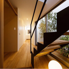 courtyard/stairs/entrance/HOUSE/interior/architect/... 玄関階段から中庭を眺められます♪  ■h…