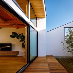 デザイン/設計事務所/設計/家づくり/リビング/ダイニング/... リビング中庭まわり♪ : ■haus-c…(2枚目)