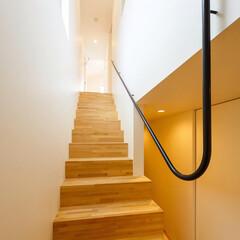 マイホーム/家づくり/建築/設計/階段/stairs/... 陽当たりの良い南面の窓からの光を共有する…(2枚目)