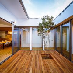 設計事務所/設計/家具/インテリア/ダイニング/ウッドデッキ/... リビング、中庭周り♪ : ■haus-f…