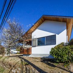 住宅デザイン/設計/梅の木/自然/玄関/外観デザイン/... 🌸梅の花が咲いたので3/28土、3/29…