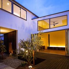 オリーブ/ウッドデッキ/中庭デッキ/中庭住宅/中庭のある家/中庭/... オリーブとデッキテラスの中庭と玄関アプロ…