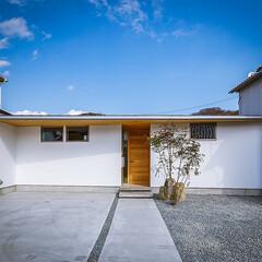 設計事務所/設計/家具/インテリア/ダイニング/ウッドデッキ/... リビング、中庭周り♪ : ■haus-f…(6枚目)