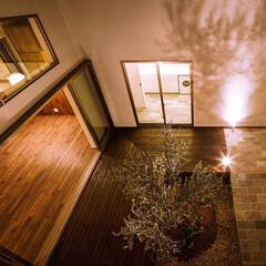 オリーブ/ウッドデッキ/中庭デッキ/中庭住宅/中庭のある家/中庭/... オリーブとデッキテラスの中庭と玄関アプロ…(3枚目)