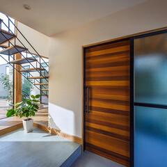 スケルトン階段/階段/玄関/玄関ドア/リビング/中庭/... 玄関からもオブジェの様なスケルトン階段越…(1枚目)