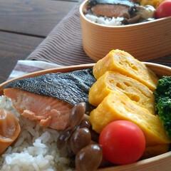 おうちごはん/宅配/ネットスーパー/弁当記録/弁当/お弁当 本日のお弁当記録🍱 お魚は 鮭ではなく鱒…